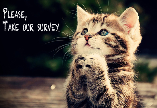 Please take our quick survey : Raining cats n'dogs
